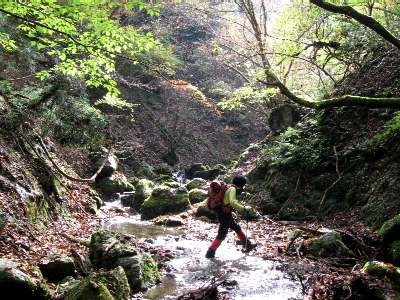 水量も少なくなり、やっと道子も楽しむツボクリ谷上流 足尾谷~ツボクリ谷~東尾根)//北山  京都